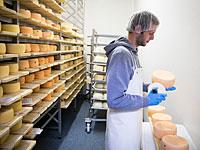 Государство оштрафовало компании, не выполнившие обязательств по беспошлинному импорту сыра, мяса и масла