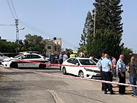 Задержаны подозреваемые в причастности к убийству в Далият аль-Кармель