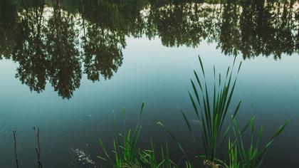 Праздничный фестиваль состоится на озере в Кемерове
