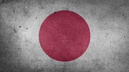 Правительство Японии осудило депутата за слова о