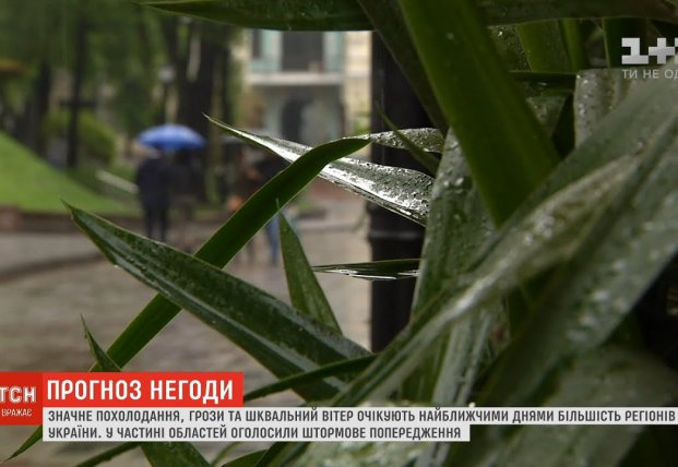 Похолодание, грозы и сильный ветер: в Украина резко поменяется погода (видео)