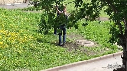 Кемеровчанка испугалась гулять с детьми из-за наркоманов-закладчиков