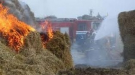 Огонь уничтожил склад сена в Кузбассе