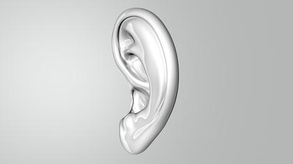 Потерявшего ухо американца нашли по объявлению в Сети