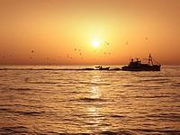 В Черном море загорелось и затонуло рыболовецкое судно. Пострадавших нет