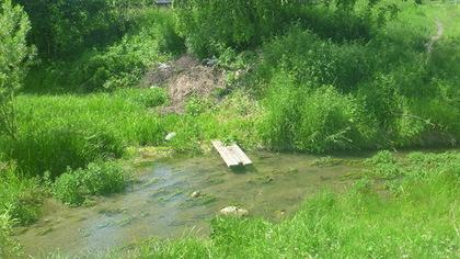 Волонтеры очистили 80 км кузбасских берегов