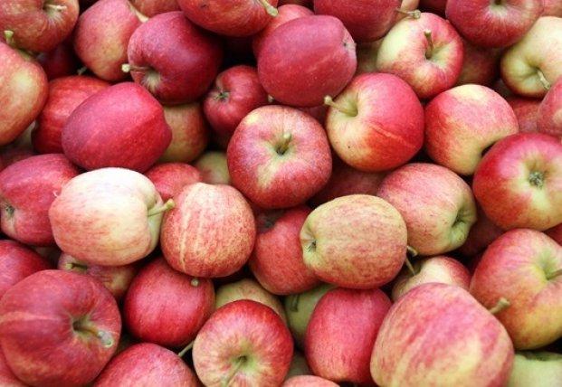 ЕС остановил импорт украинских овощей и фруктов
