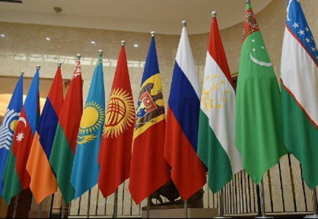 Стандартный ход: зачем Зеленского на саммит СНГ пригласили