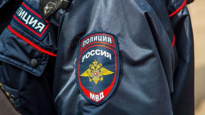 МВД России предложило наказывать за оскорбление полицейских в Сети