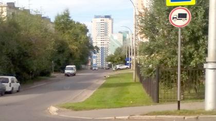 Кемеровчане заметили новый знак на городской дороге