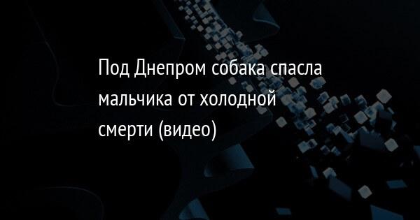 Под Днепром собака спасла мальчика от холодной смерти (видео)