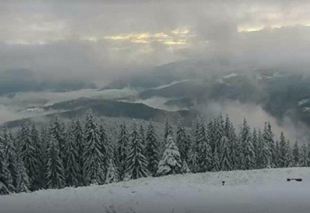 В Карпатах выпал снег, обещают сильные заморозки