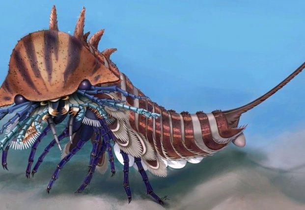 В Канаде нашли хищника-амфибию возрастом 508 миллионов лет (видео)