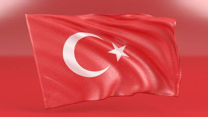 Эрдоган рекомендовал Макрону проверить голову на смерть мозга