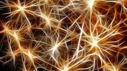 Британские ученые создали искусственные нервные клетки