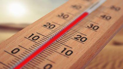 Российские синоптики назвали уходящий год самым теплым за историю наблюдений