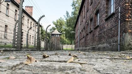Польские школьники поставили танцевальный номер на тему Освенцима