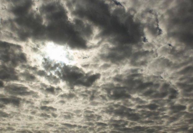 Прогноз погоды на 29 февраля: без дождей, но облачно