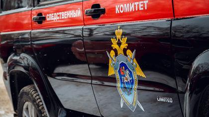 СК РФ обвинил во взяточничестве бывшую помощницу вице-премьера
