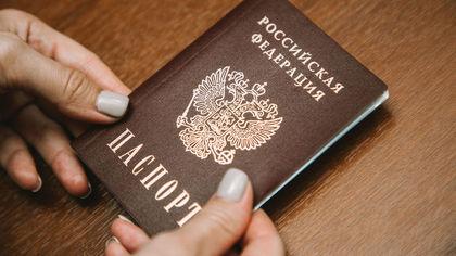 Кабмин предложил упростить получение российского гражданства для жителей четырех стран СНГ
