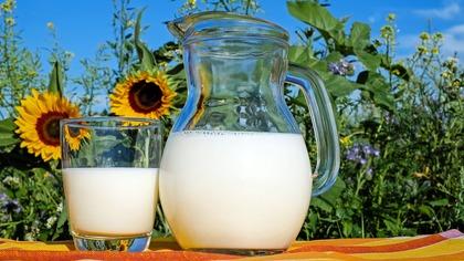 Американские ученые: молоко повышает риск развития рака груди