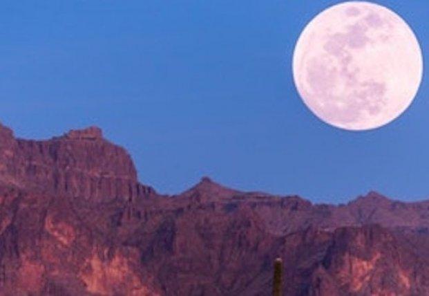 Жители Земли смогут в апреле увидеть «розовую луну»