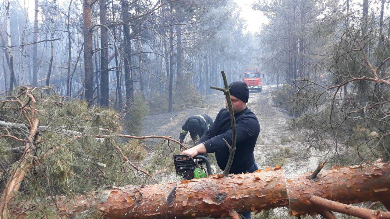 Несмотря на дожди в субботу, в Житомирской области все еще продолжают тушить пожары (видео)