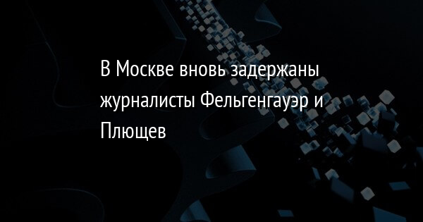 В Москве вновь задержаны журналисты Фельгенгауэр и Плющев