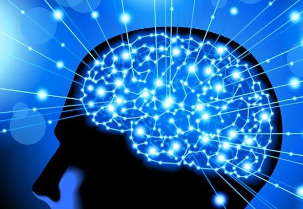 Ученые назвали три суперпродукта для улучшения работы головного мозга