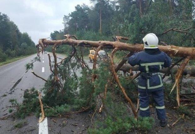 В Украине обесточены 112 сел из-за непогоды