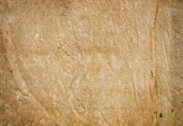 Археологи обнаружили редкий отпечаток доисторической одежды