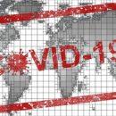 ВОЗ: Россия достигла плато по коронавирусу
