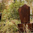 Могилы на кладбище в Омске
