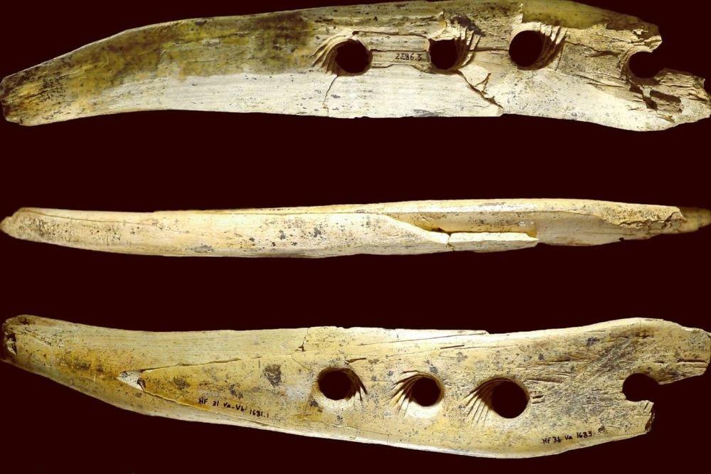 Ученые разгадали секрет древнего инструмента, который полностью изменил жизнь людей