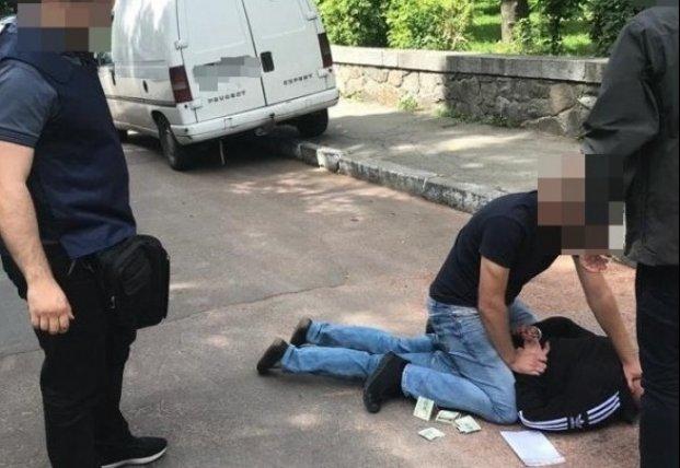 В Житомирской области на взятке в тысячу долларов задержали эколога