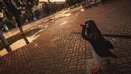 Кемеровские синоптики дали туманный прогноз на последний день лета