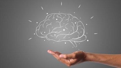 Мясников перечислил разрушающие мозг болезни