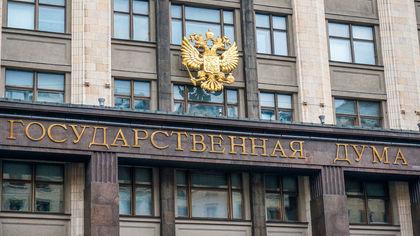 Депутат внес в Госдуму законопроект о борьбе с