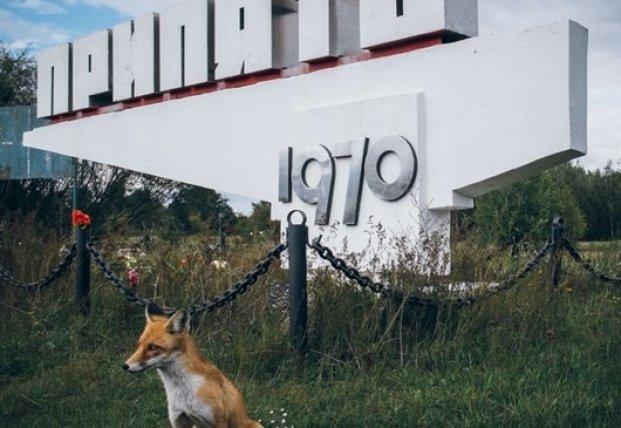 Чернобыльский заповедник добавили в перечень охраняемых территорий