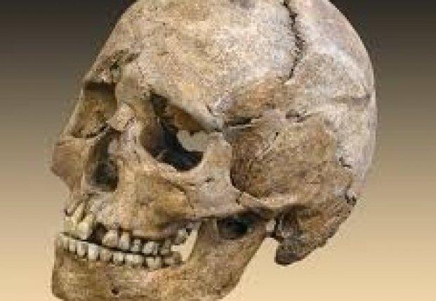 Ученые раскрыли тайну 5000-летнего черепа