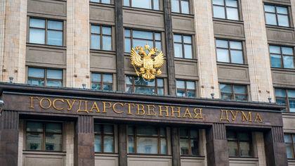 Депутат Госдумы предложил ввести зарплату для матерей
