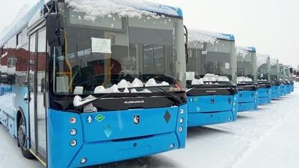 Партия новых автобусов пополнила кузбасские автопарки