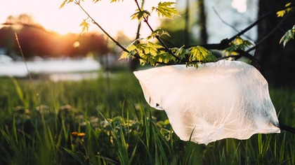 Россия выступила против запрета пластиковых пакетов