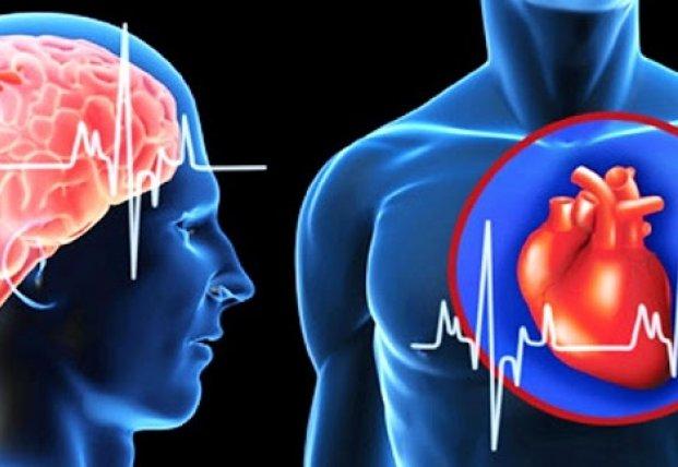 Ученые выяснили, как можно предсказать инфаркт или инсульт