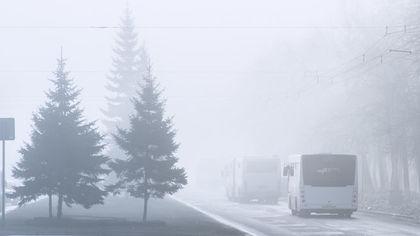 Автовокзал Новосибирска отменил рейсы до Кузбасса из-за морозов
