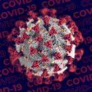 Российский терапевт озвучил самую опасную мутацию COVID-19