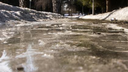 Синоптики пообещали кузбассовцам теплое воскресенье