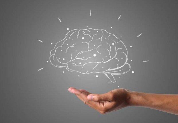 Медики назвали три продукта для улучшения работы мозга