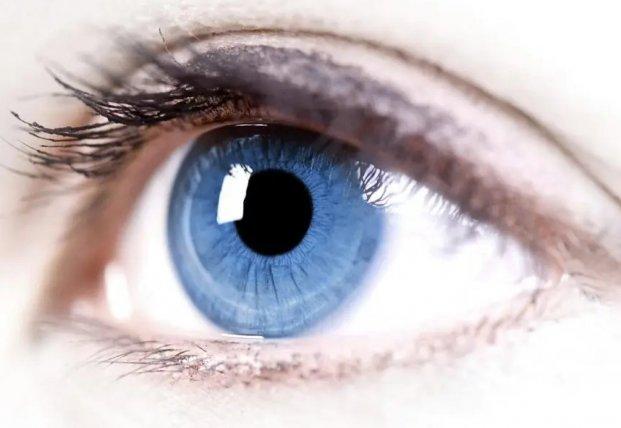 Медики назвали витамины для органов зрения