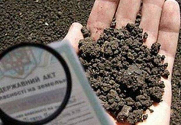 На Закарпатье чиновники организовали схему по присвоению земель